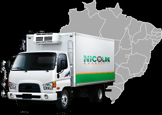 About us - Nicolini